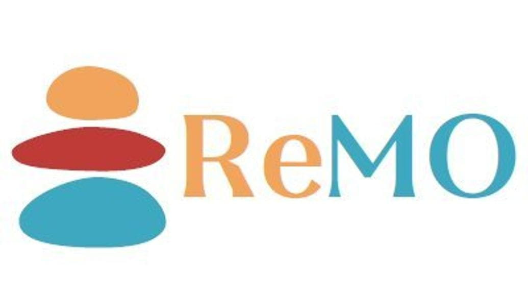 Prof. Radenka Krsmanović Whiffen participates in the ReMO COST Action CA19117